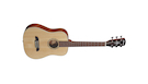 ALVAREZ Rt26 Chitarra Ac. Dreadn. Travel + G.bag Dlx