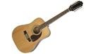 EPIPHONE DR212 Natural