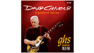 GHS Muta GB-DGG David Gilmour Set Gibson