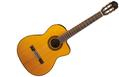 TAKAMINE GC5CE Natural