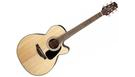TAKAMINE GN30CE Natural