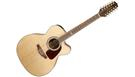 TAKAMINE GJ72CE12 Natural