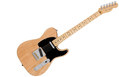 FENDER American Professional Telecaster MN Natural