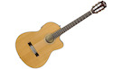 FENDER CN140SCE Nylon Natural WN with case