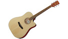 IBANEZ PF10CE OPN Open Pore Natural