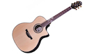 CRAFTER SH G1000CE