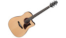 IBANEZ AAD300CE Natural Low Gloss