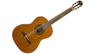 TAKAMINE GSC1 Natural Gloss