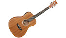 TANGLEWOOD Roadster TWR2 PE Natural Satin