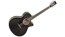 TANGLEWOOD Winterleaf TW4 E BS Black Shadow Gloss