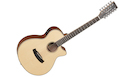 TANGLEWOOD TW12 CE Natural Satin