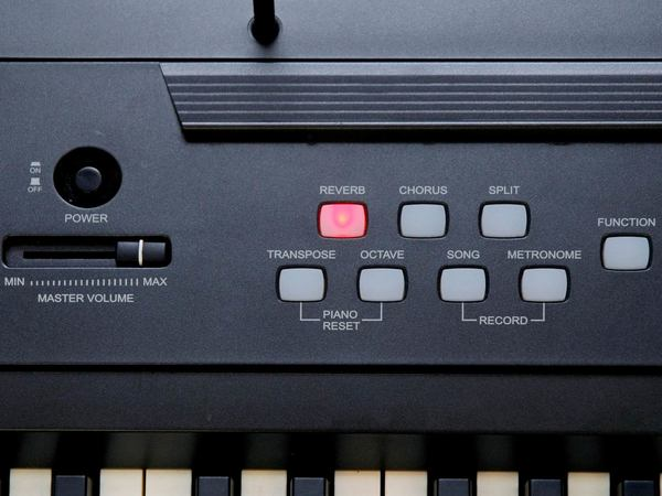 RINGWAY RP20 Stage Digital Piano