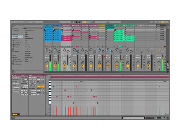 ABLETON Live 10 - Upgrade from Live 1-9 (download)