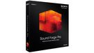 SONY Sound Forge Pro 12 (Windows)