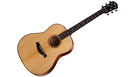 TAYLOR Builder's Edition 517e Natural